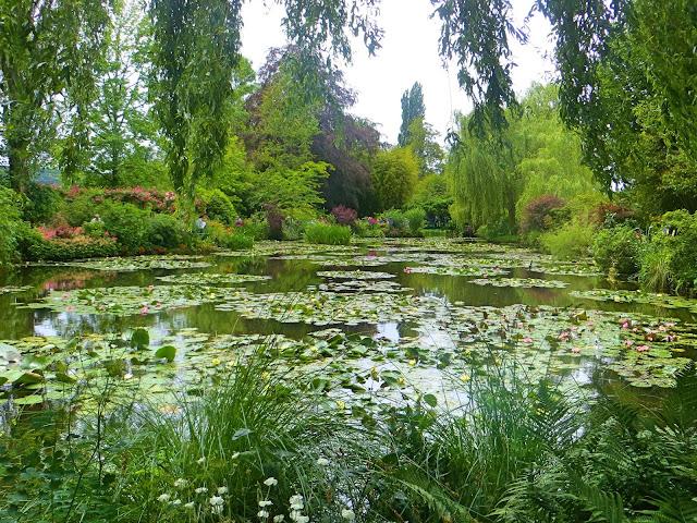 Monet's garden, Water garden