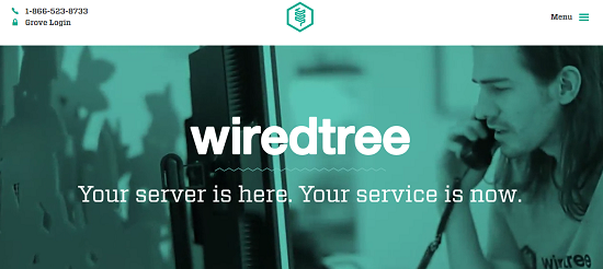WiredTree Hydbrid Coupon Code, WiredTree, VPS, Dedicated Server