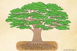 Pohon dan Makna Kehidupan   Pesan Inspiratif