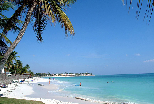 Playa-Palm-Eagle-Aruba