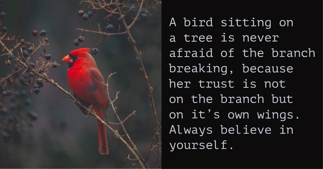 A bird🐤🐤 💺sitting💺 on🔛 a🅰️ tree🍃 is never afraid of the 🎋branch 🎋 breaking💔💔, because her trust is not 🔛on 🔛 the branch🎋🎋 but on🔛🔛 it's own wings👼. Always believe in yourself.