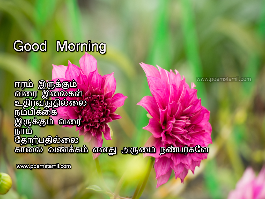 Tamil Kavithai Good Morning Kavithai Images