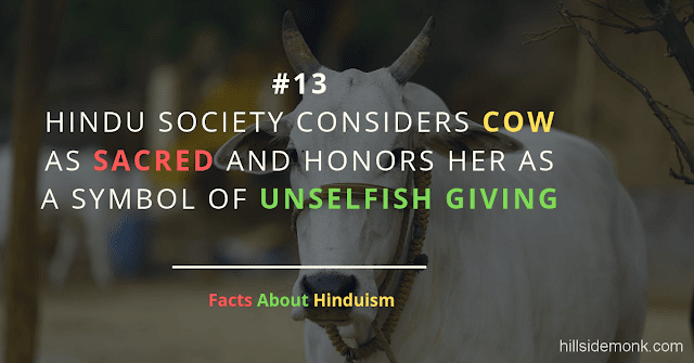 Fact About Hinduism 13 UNSELFISH COW HOLY