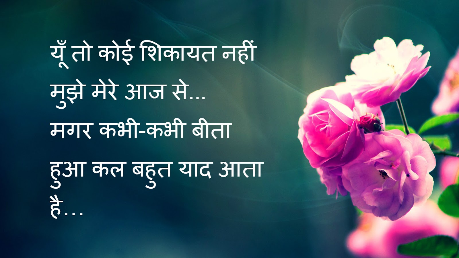 Wallpaper download love shayri - Best Hd Hindi Shayari Image Free Download Hindi Shayari Hd Image Download Love Shayari In Hindi For Girlfriend Image Daily Update Hindi Shayari Images Best
