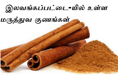 cinnamon benefits in tamil