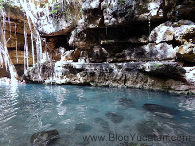 Cenote X-Batun