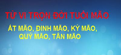 TU VI TRON DOI TUOI MAO