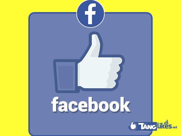 ban fanpage facbook