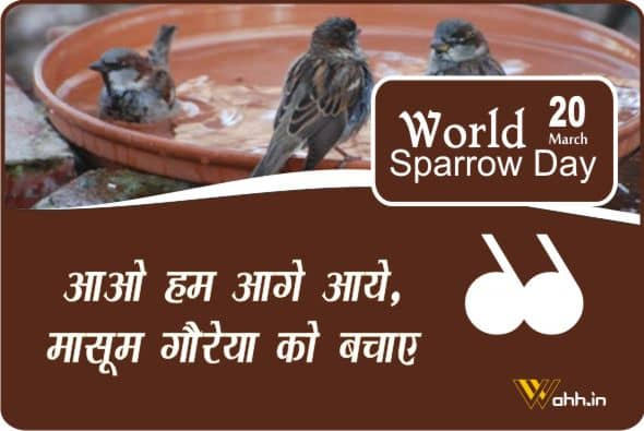 World Sparrow Day Wishes For Whatsapp