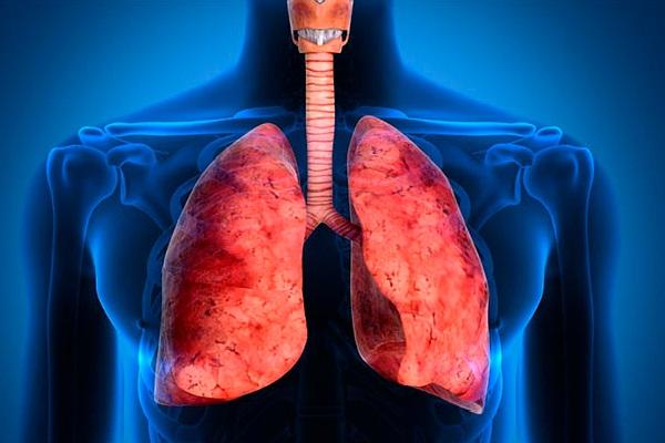12 estratégias nutricionais para reverter doença pulmonar obstrutiva crônica