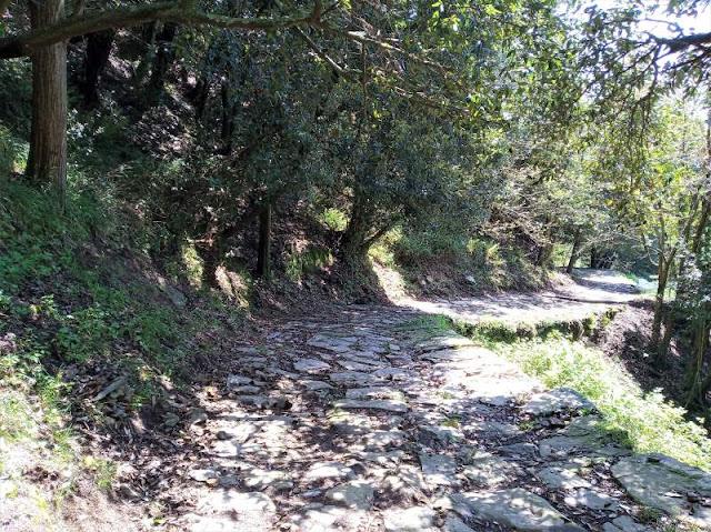 sentiero 509 Soviore Monterosso