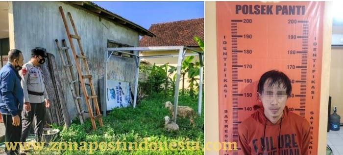 Unit Reskrim Polsek Panti, Berhasil Tangkap Pencuri Kambing Milik Warga