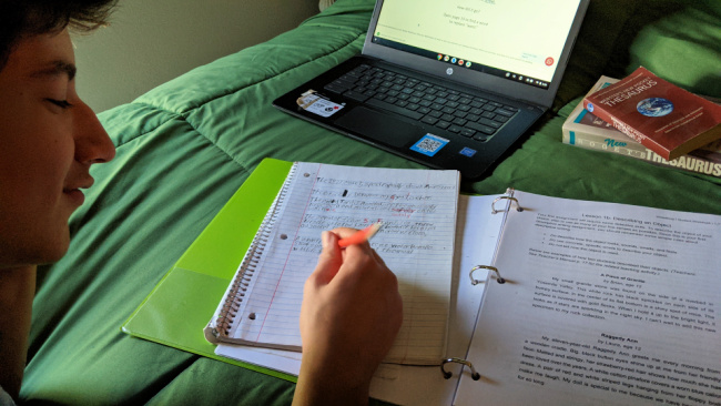 WriteShop I  - writing course for teens