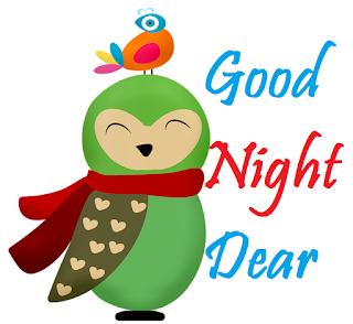 good night beautiful birds images