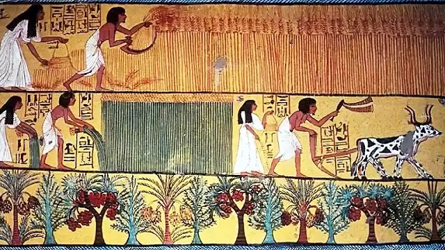 Ancient Egyptian Diet