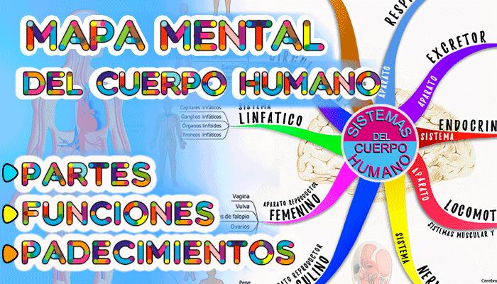 mapa mental del cuerpo humano nuevo