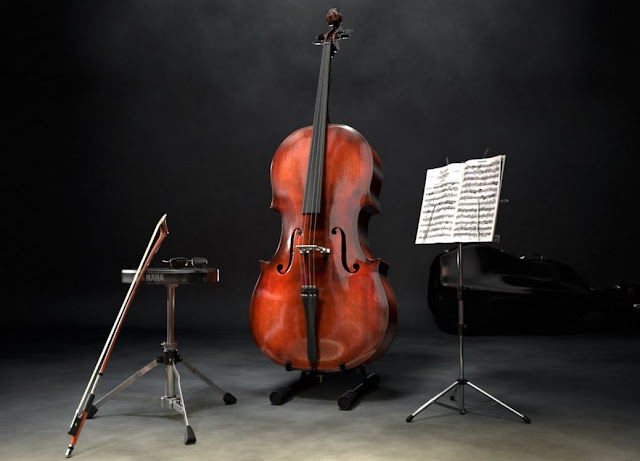 The cello is the largest instrument of the string quartet of the string quartet and also called the violoncello. Cello can play the lowest notes of all the instruments in the quartet and often use to fulfill this role.