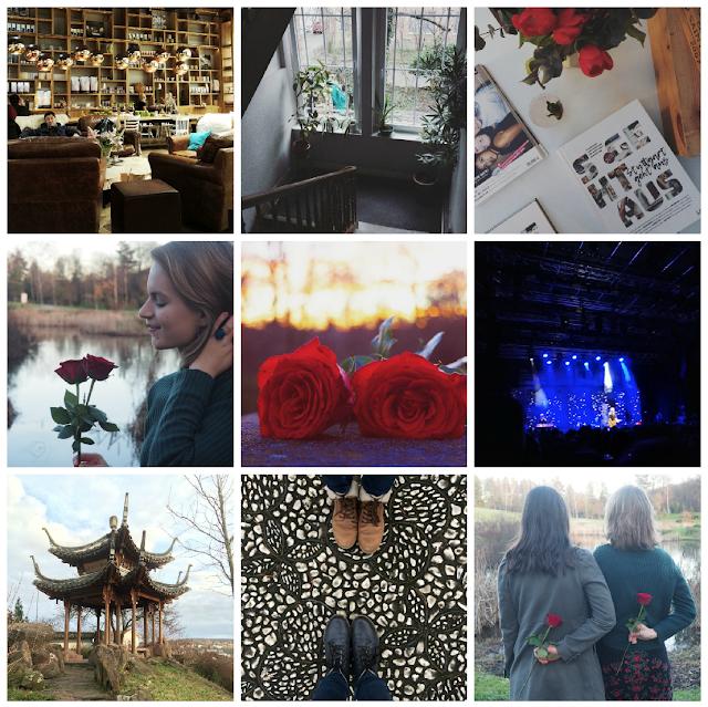 monatsrueckblick-januar-collage-gluecksmomente