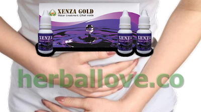 √ Obat Maag Herbal ⭐ Xenza Gold Original ✅ Herballove
