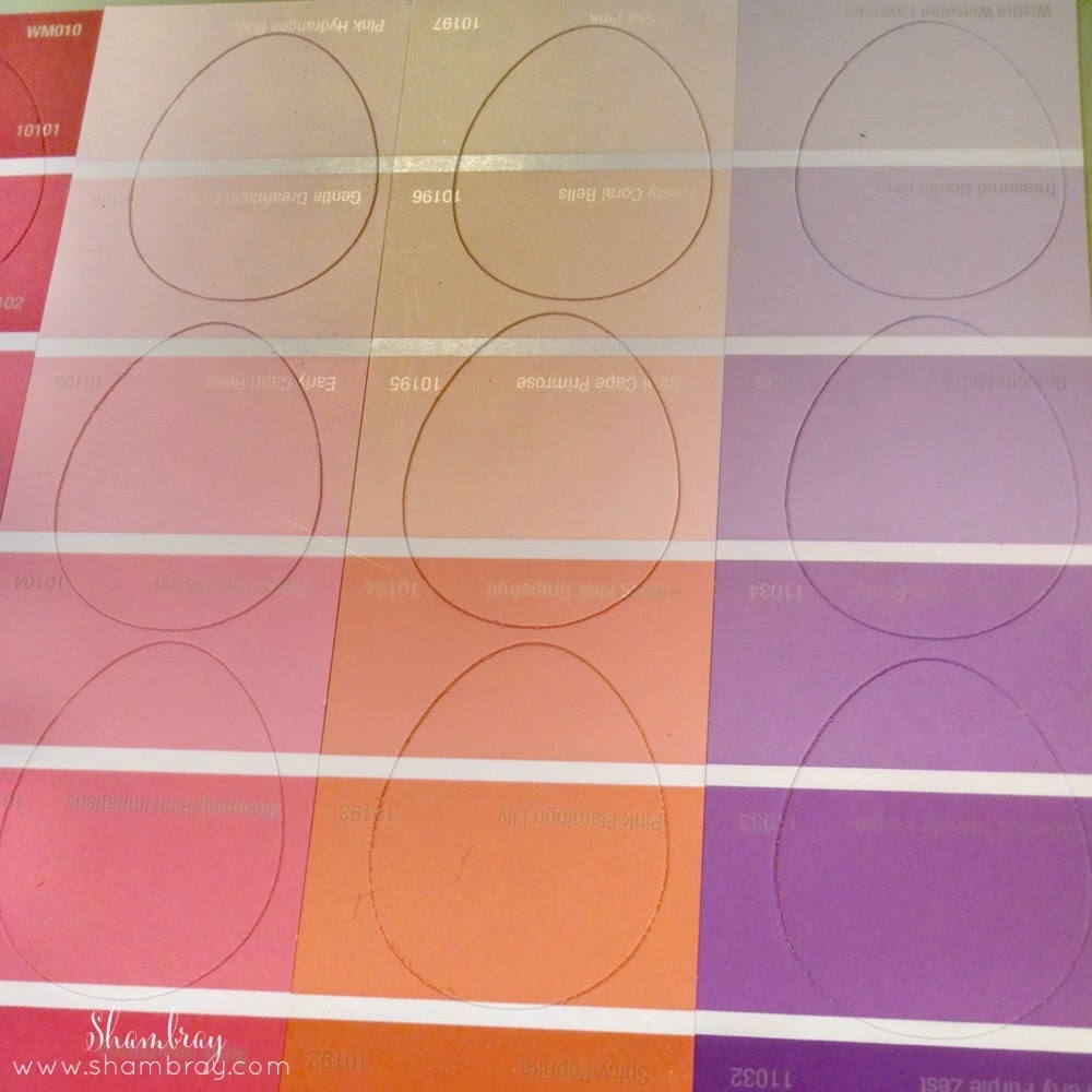 Cricut Explore, colorful, paint swatches