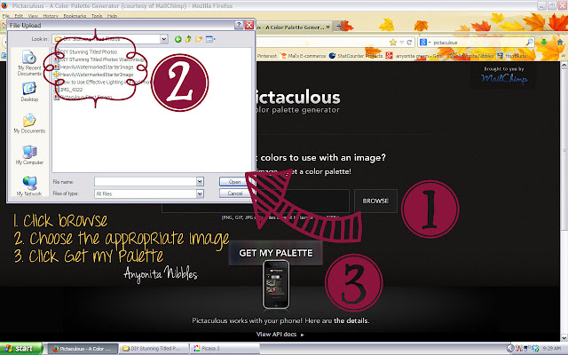 How to Use Pictaculous: Steps 1-3 from www.anyonita-nibbles.com