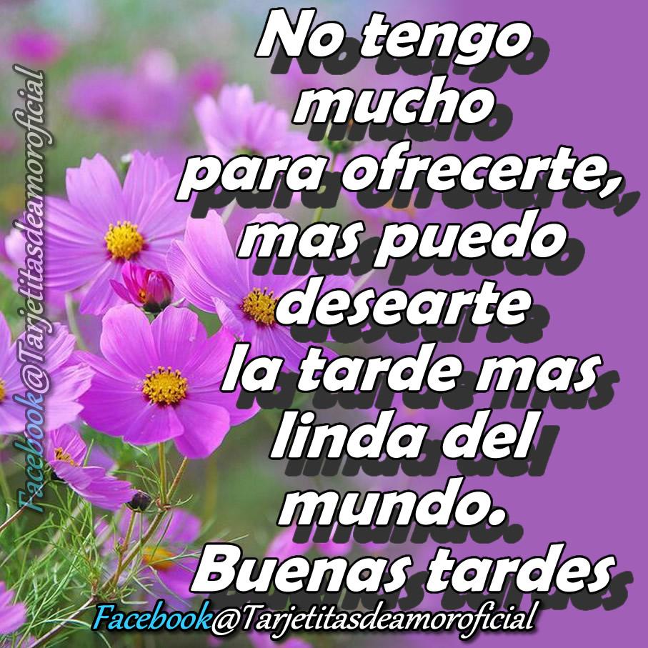 Feliz Tarde Amigos De Facebook Wwwmiifotoscom