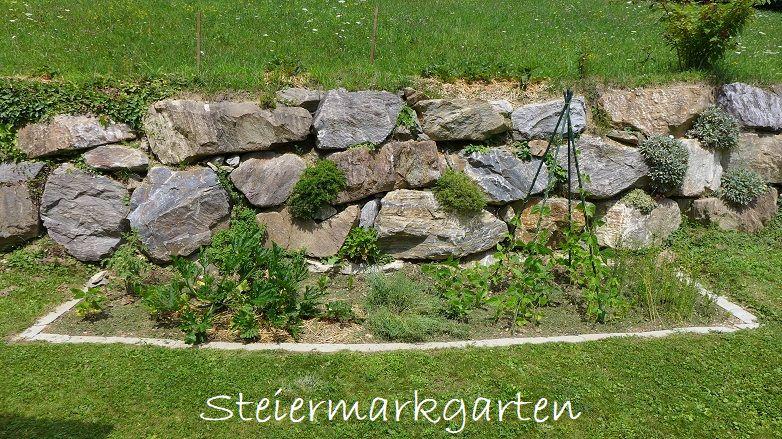Gemüsebeet-Steiermarkgarten