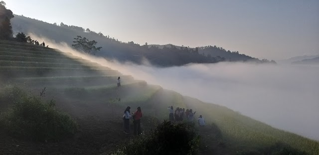 5 suggestions for the complete Mu Cang Chai trip