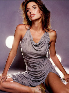 Josie Maran In Grey Short Dress