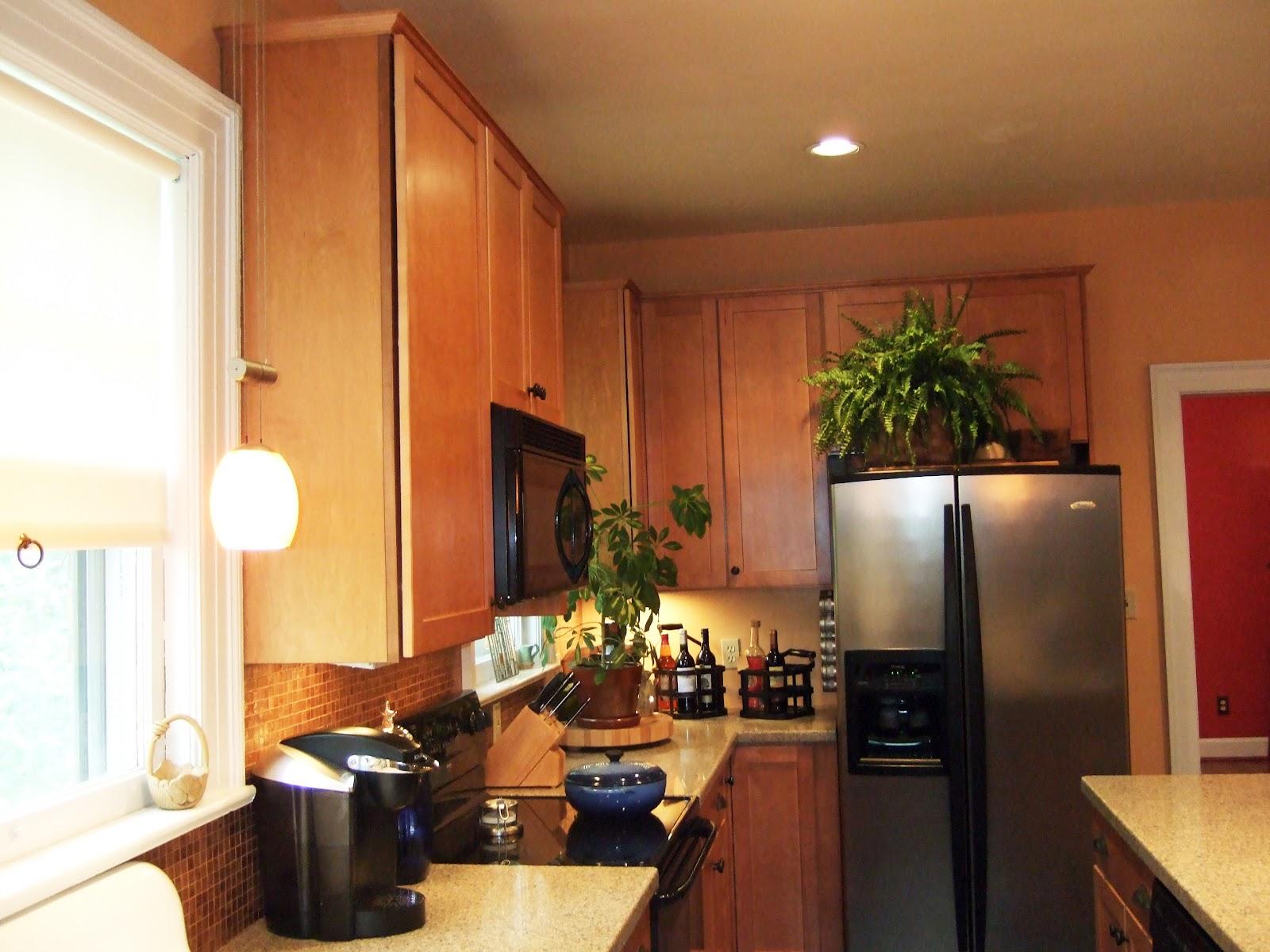 W D Osborne Design Construction 919 493 2936 Kitchen Design Remodel