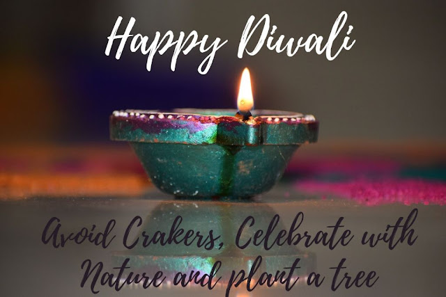 Quotes on Eco-Friendly Diwali