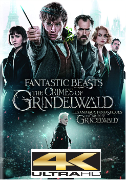 Animais Fantásticos – Os Crimes de Grindelwald Torrent (2019) BluRay 4K HDR Dublado / Dual Áudio