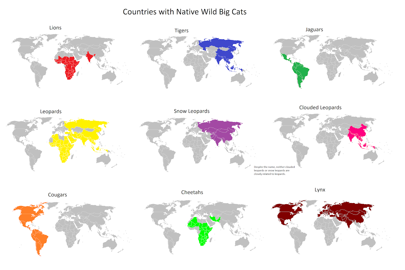 Nations with native wild big cats
