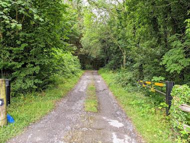 Things to do near Athlone: Path to Brittas Lake near Clonaslee
