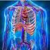 Triase Gawat Darurat Kardiovaskuler