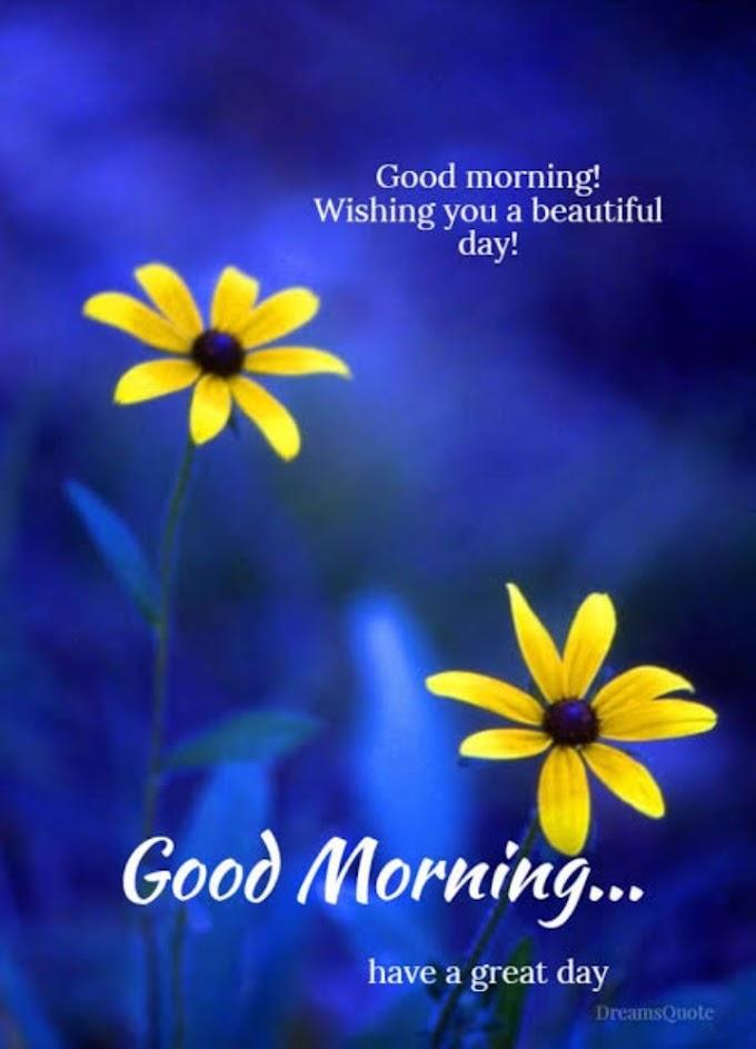 Morning Digest( Inspiration)