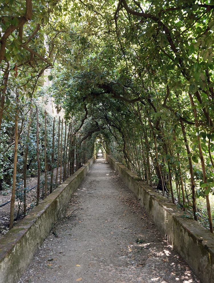 Euriental - Florence, Italy, Boboli Gardens