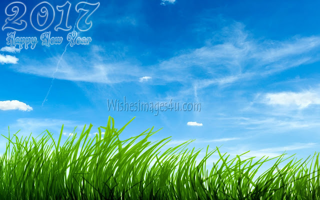 New Year 2017 Nature Pictures In HD Download Free
