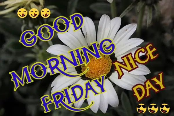 Good Morning Friday Images for Whatsapp