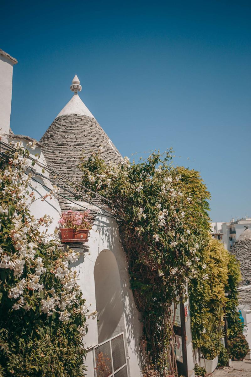 Puglia travel guide: Alberobello