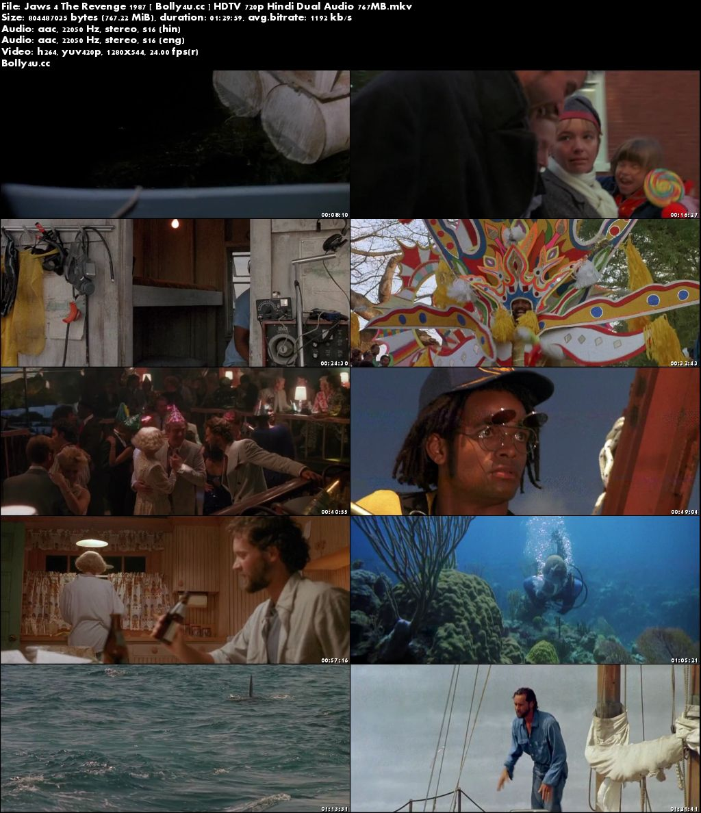 Jaws 4 The Revenge 1987 HDTV 350MB Hindi Dual Audio 480p Download