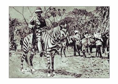 C A M O U P E D I A: Horses Camouflaged with Paint
