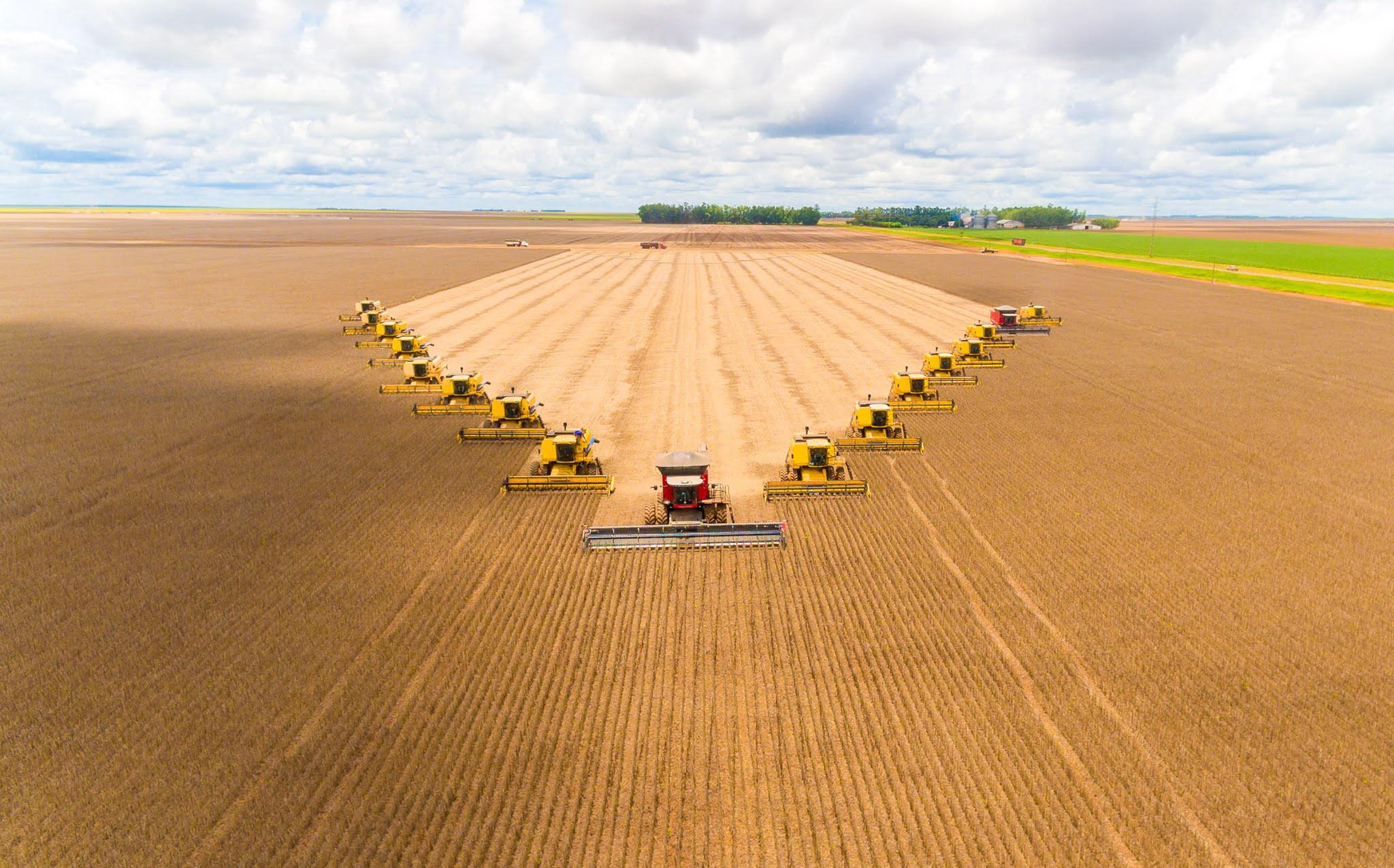 Producción agropecuaria brasileña