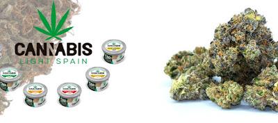 Truco saludable CBD Cannabis