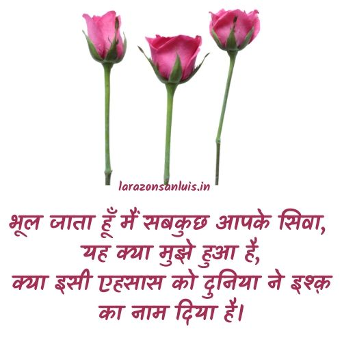 love-shayari-in-hindi-with-image