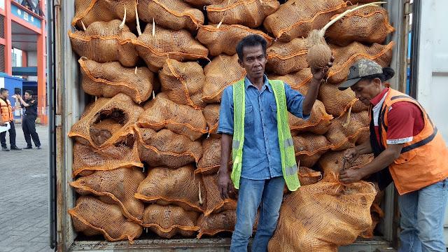 thủ tục nhập khẩu trái dừa khô