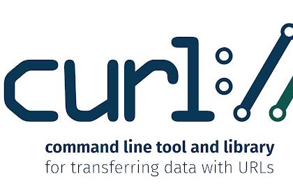 Run CURL di Web Based dan Metode Debug di Laravel