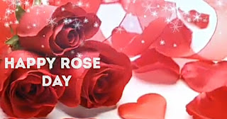 Rose day quotes.
