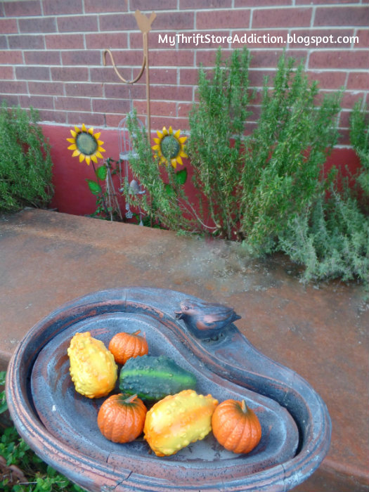 Bird bath filled with fall gourds