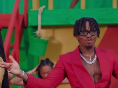 VIDEO | Tanasha Ft Diamond Platnumz – Gere | Download